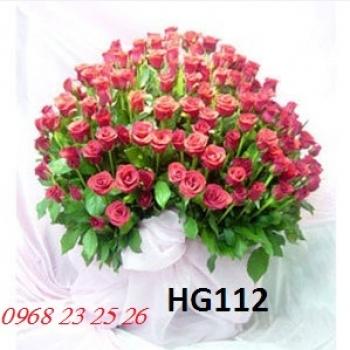 hoa hg112