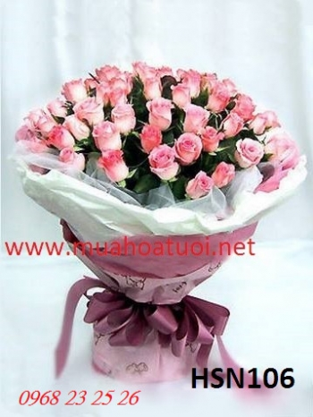 hoa hsn106