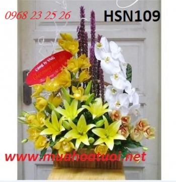 hoa hsn109