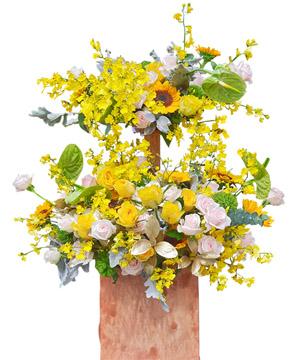 hoa sinh nhat k376