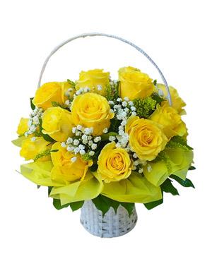 hoa sinh nhat k380