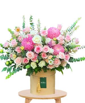 hoa sinh nhat k381