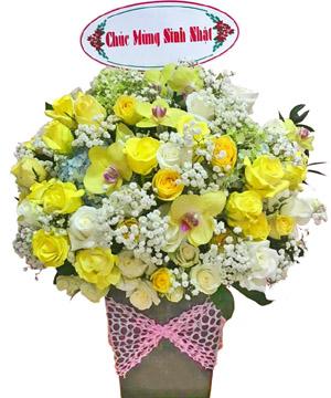 hoa sinh nhat k384