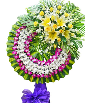 hoa tang le k275